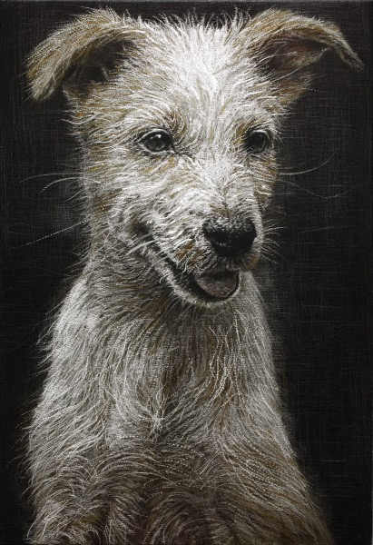 HAN YoungWook_Dog_Oil on Aluminum, Scratch_73x50cm_2014
