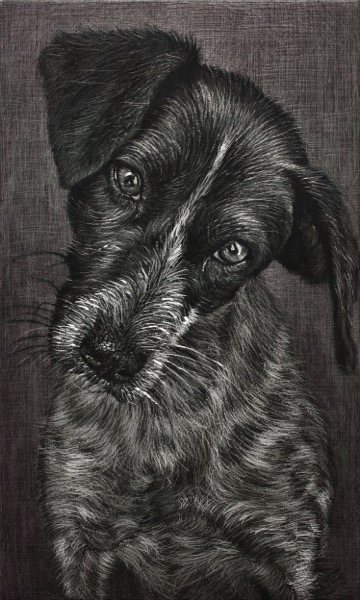 HAN YoungWook_Dog_Oil on Aluminum, Scratch_73x44cm_2014