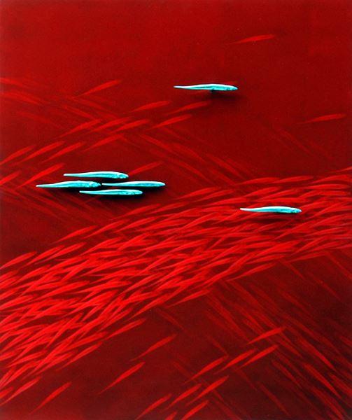 Lifish (삶), Mixed Media on Aluminum, 70x60cm, 2015