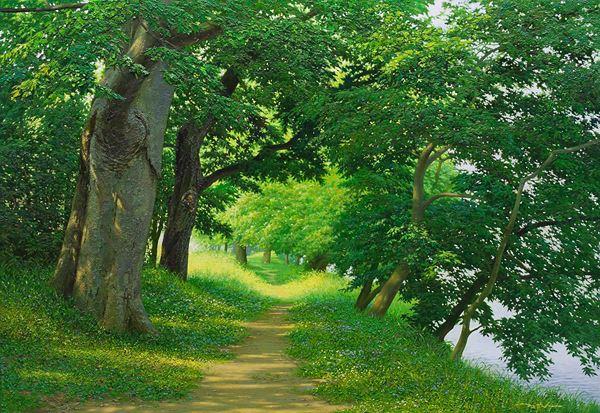 고요한 숲, Silent Woods, Oil on Canvas, 80.3x116.7cm, 2014