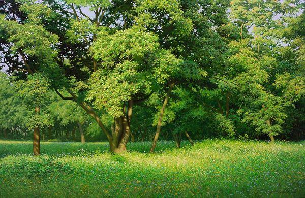 고요한 숲(Silent Woods)_65.2×100cm_Oil on Canvas_2014