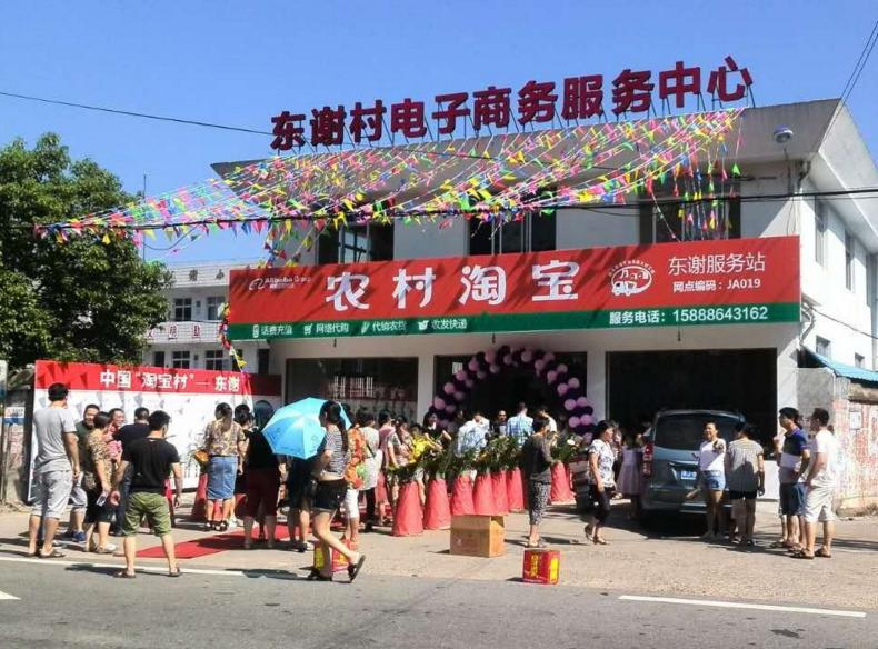전자상거래와 농촌의 결합, 타오바오촌의 모습