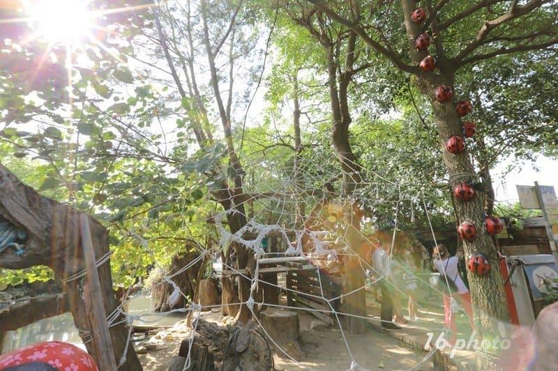 A-Tainan-Herb-Farm-23