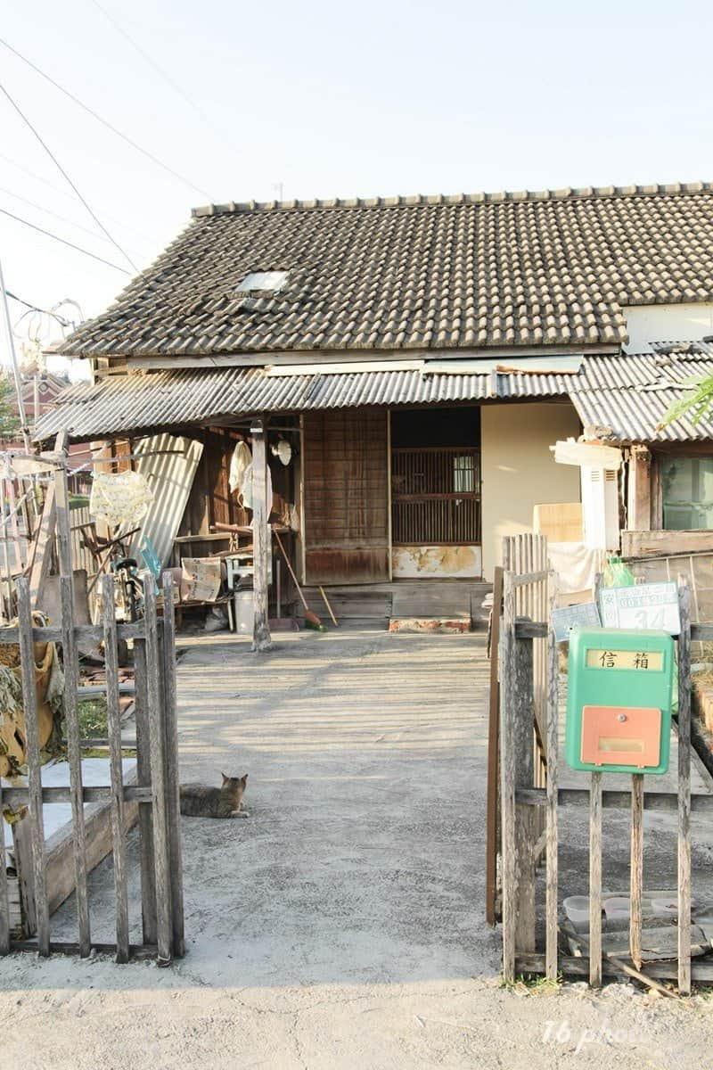 A-Tainan-cat-village-21