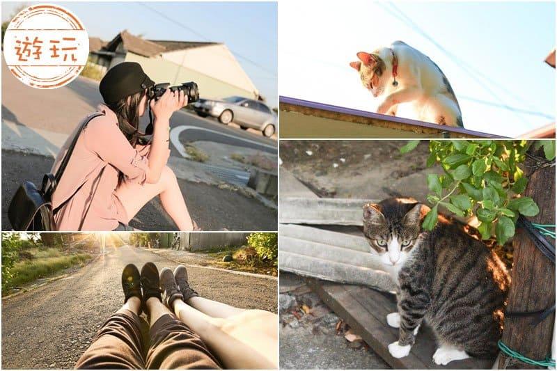NEW-Tainan-cat-village