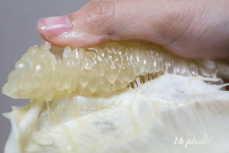 tainan-peiyu-57
