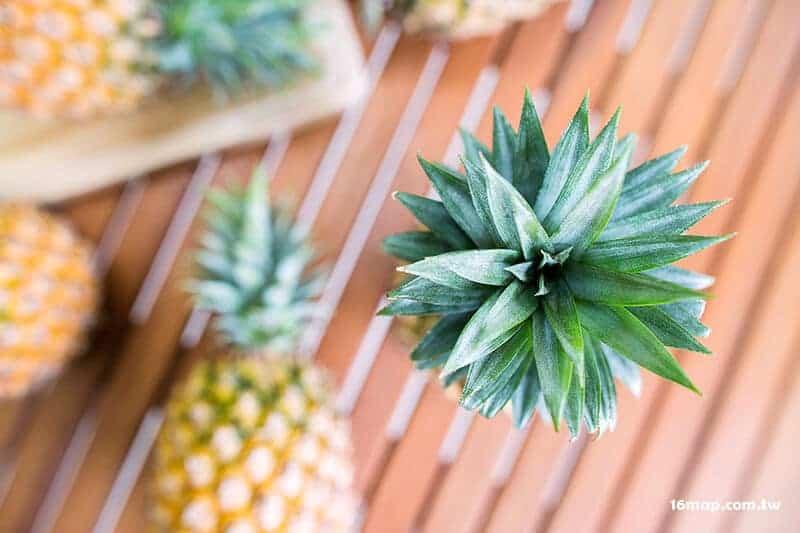 Wigan pineapple-5