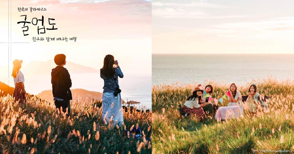 [걸스_오늘은여기] 한국의 갈라파고스 '굴업도' 섬! 낮엔 갈대밭에서 캠핑, 밤엔 별이 빛나는 은하수 밤을 만날 수 있는 그 곳으로.