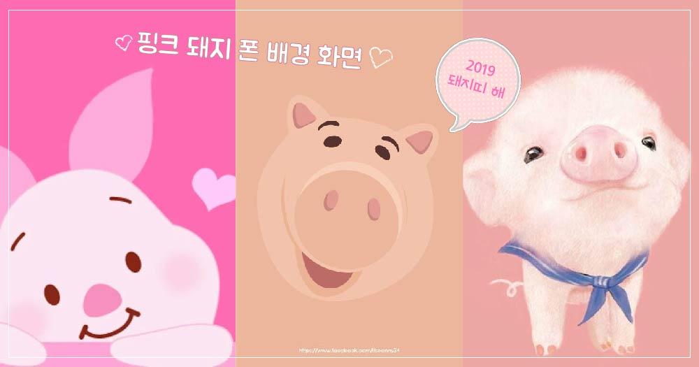 【블라블라】 누구나 저장 각이야~! 돼지띠 해 맞이 핑크 돼지 배경 화면 15