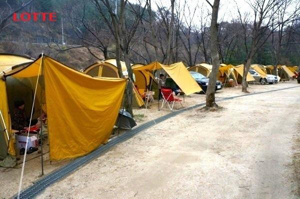 캠핑장전경1