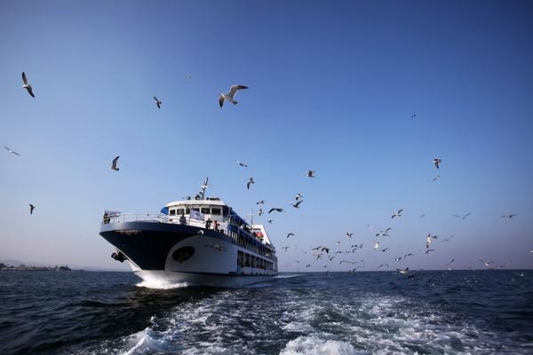 유람선을 타고 즐기는 동해 크루즈 여행