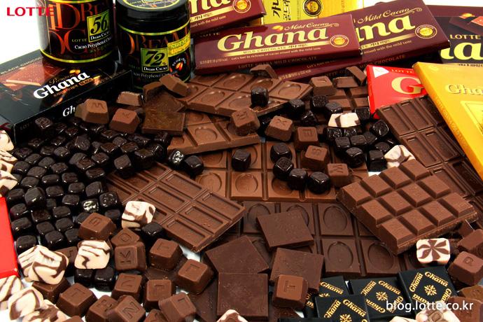 초콜릿의 오해와 진실