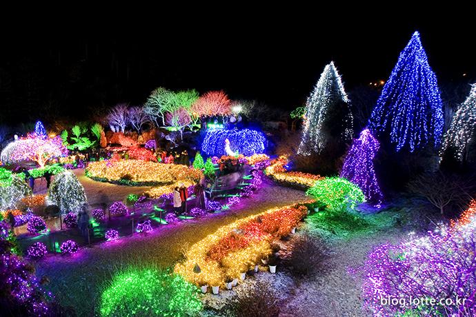 아침고요수목원 오색별빛정원전 모습