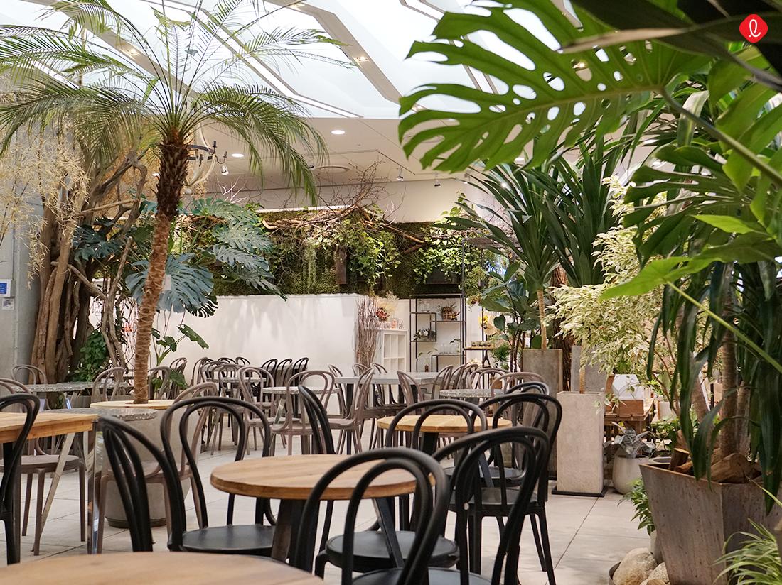 맹그로브, 카페 인테리어, 식물 인테리어, 초록초록한 카페, 정원있는 카페, 여름 가든 카페