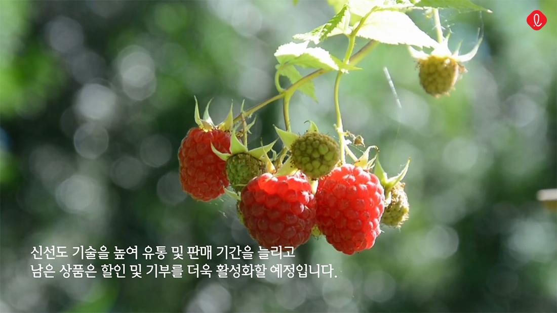 롯데 친환경 식품 폐기량 감축 재활용 환경 보호 필환경