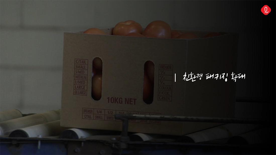 롯데 친환경 패키징 포장 롯데백화점 명절 선물세트 자연 선순환 프로젝트 환경 보호