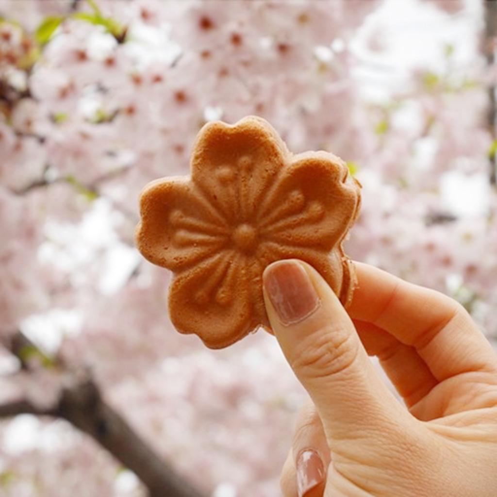 꼭 먹어봐야할 벚꽃간식 사진