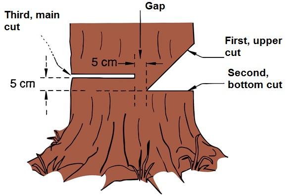 나무자르는 방법