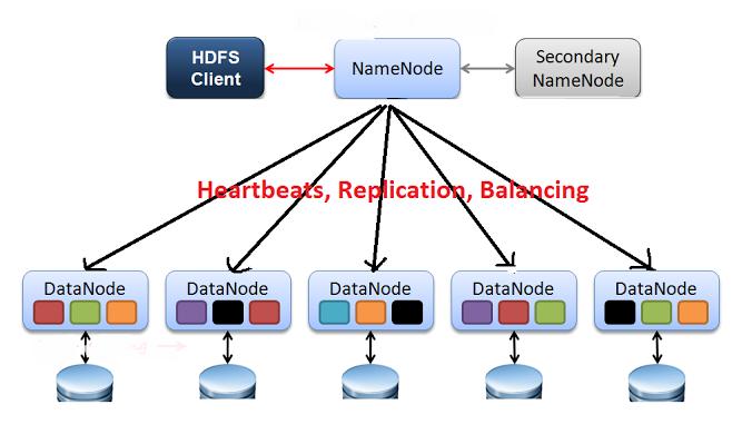 HDFS의 구조