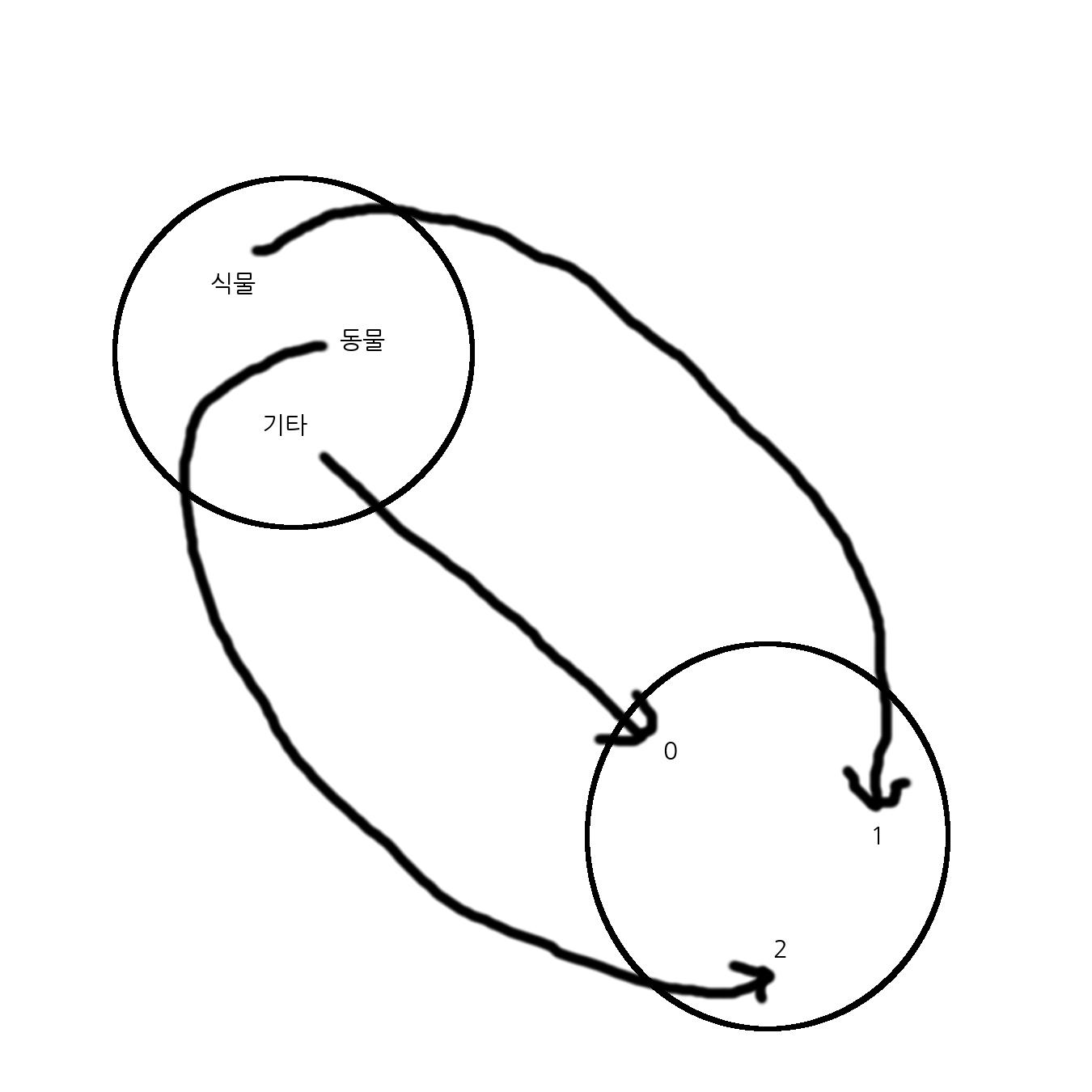 함수의 예시: 식물 -> 1, 동물 -> 2, 기타 -> 0