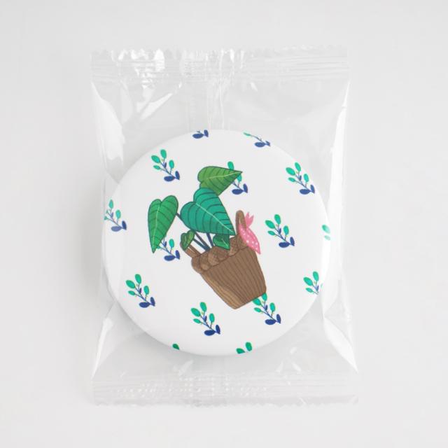 Single Packaging