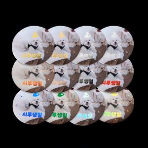 9가지 박의 종류