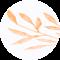 주황-Orange