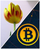 Tulips and Bitcoin