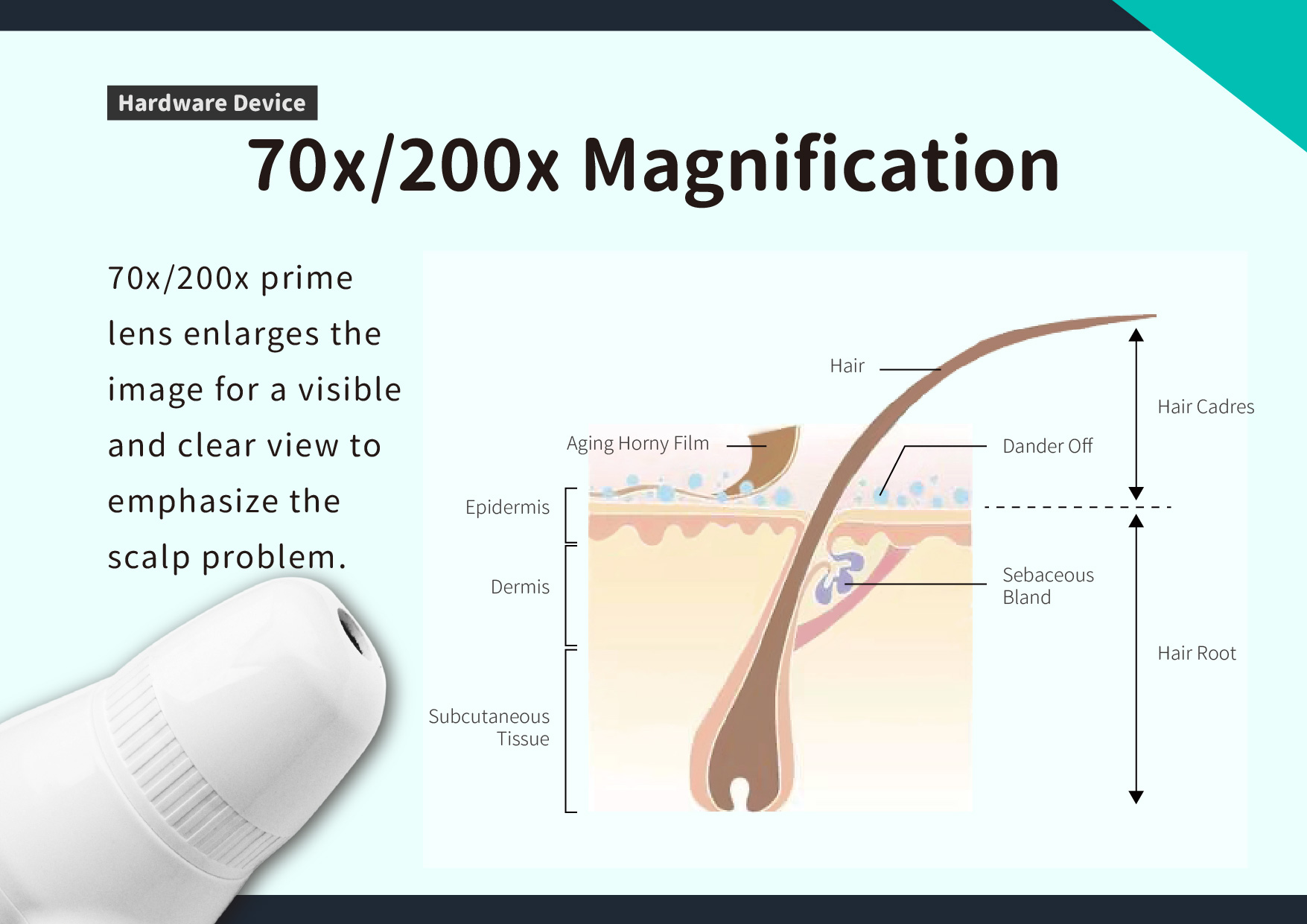 70x/200x Magnification: 70x/200x prime lens enlarges the image for a visible and clear view to emphasize the scalp problem.