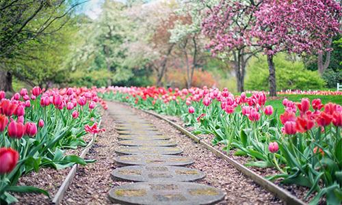 봄기운 만개한 5월의 시작, 트리노드의 봄 방학